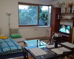 Apartment Mojmirova