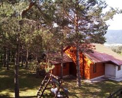 Alexandar Holiday Apartments and Cottage