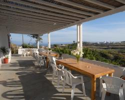 Lino View