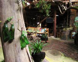 Hotel Casa Tarzan