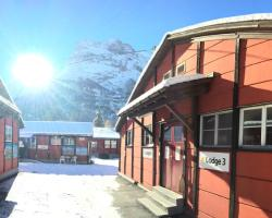 Downtown Lodge (Hostel)