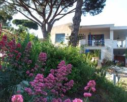 """Studios """"Villa Coeur sur Mer"""""""