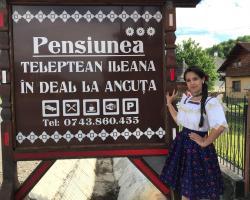 Pensiunea Ileana Teleptean