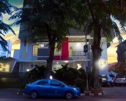 House of Arsonia Tulip
