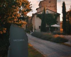 Vaccaria