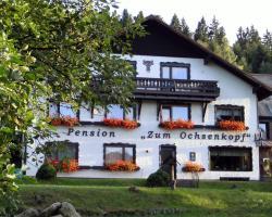 """Hotel-Pension """"Zum Ochsenkopf"""""""