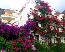Aphrodite Pension