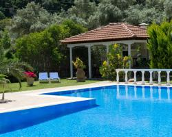 Villa Dimitris Apartments & Bungalows