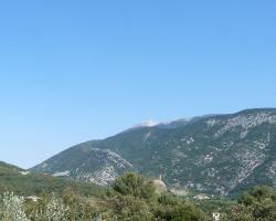 Aicardi
