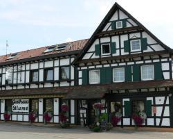 Hotel Landgasthof Blume