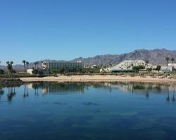 Avi Resort & Casino
