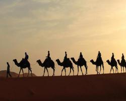 Rao Bika Ji Camel Safari