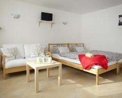 Apartment Bořivojova