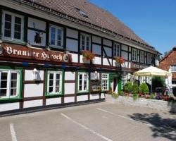 Hotel Brauner Hirsch