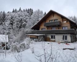 Chalet OTT - apartment in the mountains