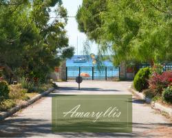 Amaryllis Summer Maisonettes