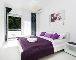 Apartment Purple Magic