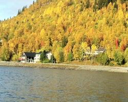 Tärnaby Rooms & Apartments