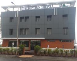 New Leaf Achillea