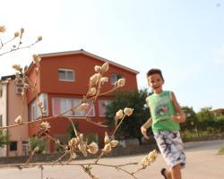 Guesthouse Casa Bevanda