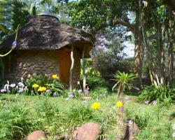 Bush Baby Lodge