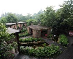 Mount Emei Jadeite Resort