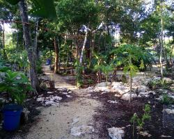 Quintana Roo National Park Campground & Hiking