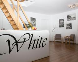 White Podwale 19