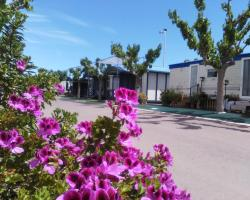 Camping y Bungalows Monmar