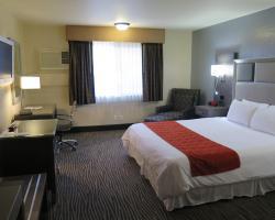 Bonanza Inn and Suites