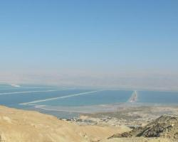Oasis Negev