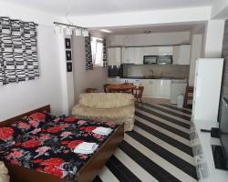 Apartments Leonid