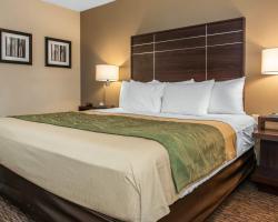Comfort Inn Fort Wayne