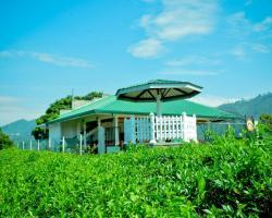 Yoho Cool Mount Resort