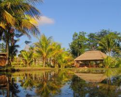 Prashanti Bali