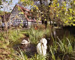 Springbach-Mühle Belzig