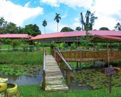 Sabah Tea Garden-Longhouses