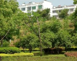 Huangshan Bed and Breakfast