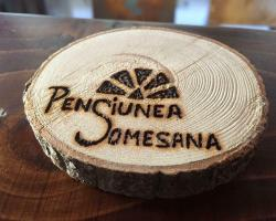 Pension Somesana