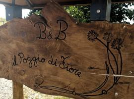 Il Poggio di Fiore, Castellina Marittima (Terriccio yakınında)