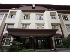 OYO 1672 Hotel The Pearl