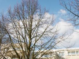 """Boarding House """"Herzogpark Celle"""", Celle"""