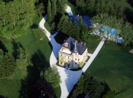 Château de la Tour de Puits, Coise-Saint-Jean-Pied-Gauthier (рядом с городом Сен-Пьер-д'Альбиньи)