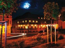 Hotel Zelený Strom, 호로비체