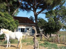 Mas de Reboul vieux, Lunel (рядом с городом Marsillargues)