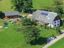 Ferienhof Gerda - Ferienwohnung Storchennest, Oberkirnach