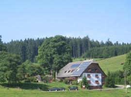 Ferienhof-Gerda-Ferienwohnung-Talblick, Oberkirnach (Hagzinken yakınında)