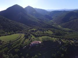 Mas Pineda, Ош (рядом с городом La Vall de Bianya)