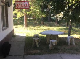 Penny apartmanhaus, Répáspuszta (рядом с городом Somogyaszaló)