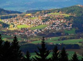 Ferienwohnungen/Pension Wagerer, Rimbach